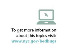 More bedbug info