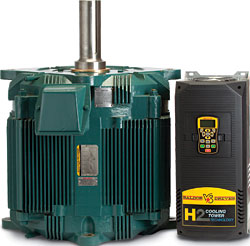 Facilities Management Hvac Cooling Tower Motor Baldor