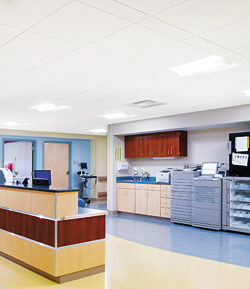 Ceiling Panels: Armstrong Ceiling Systems