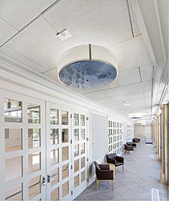 Ceiling Panel: pinta acoustic inc.