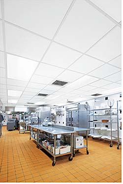 Ceiling: Armstrong Commercial Ceilings & Walls