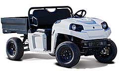 Electric Utility Vehicle: Polaris Industries Inc.