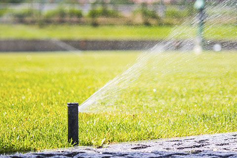 Institutional and commercial facilities rely on irrigation systems to ensure landscapes retain their appearance and health