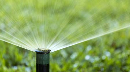 Slowing the Flow on Irrigation Systems to Conserve Water