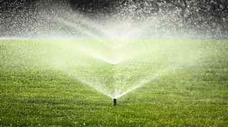 Irrigation System Warning Signs and Potential Solutions - Facilities