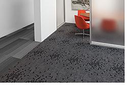 Carpet: Tandus Flooring