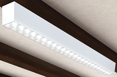 Fluorescent Luminaire: Alera Lighting