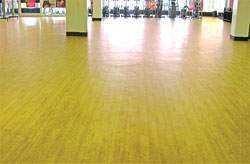 SignaFlor, SignaFlex, SignaFlexAqua, RubberDeck and TempoTile: Signature Sports Flooring