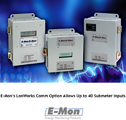 Submeter Communication Option (Option LTP): E-Mon LLC