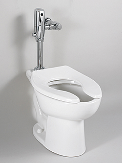 Dual-Flush Toilet: American Standard Brands