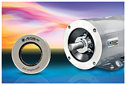 Bearing Protection Ring: Electro Static Technology (AEGIS)