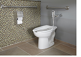 Toilet System: American Standard Brands