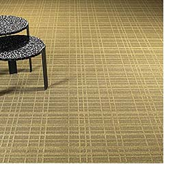 Carpet: Mannington Commercial