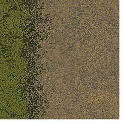 Carpet Tiles: InterfaceFLOR LLC