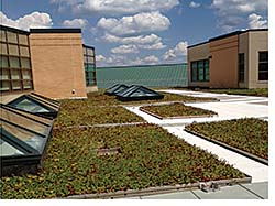 Vegetative Roof: Seaman Corp. - FiberTite Division