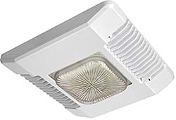 Canopy LED Lights: Cree Inc.