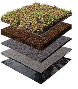 Vegetative Roof: Xero Flor America Inc.