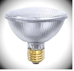 Halogen Lamp: Litetronics International Inc.