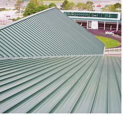 Metal Roof: Tremco Inc.