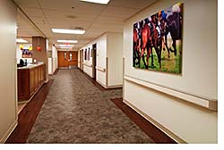 Spray Adhesive: Armstrong Commercial Flooring