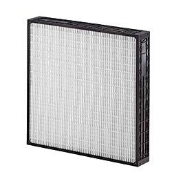 Filters: AAF International (American Air Filter)