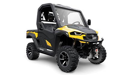 Utility Vehicle: Cub Cadet