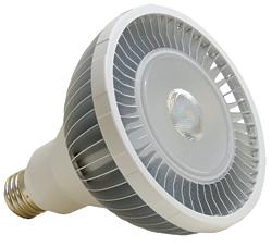 LED Lamps: Bulbrite