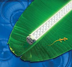 Light-Emitting Diode (LED) Lights: LEDtronics Inc.