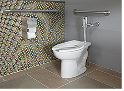 High-Efficiency Toliet: American Standard Brands