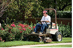 Compact Mower: Grasshopper Co.
