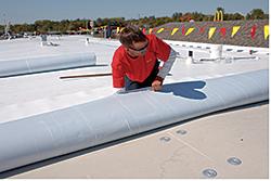 TPO Membrane: Firestone Building Products Co.