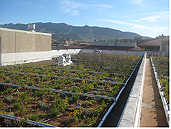 Vegetative Roofing: The Garland Co. Inc.