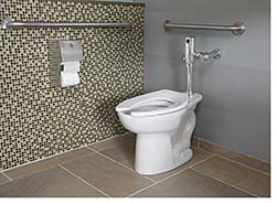 High-Efficiency Toilet: American Standard Brands