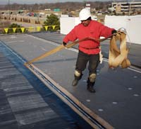 Roof System: Firestone Building Products Co.