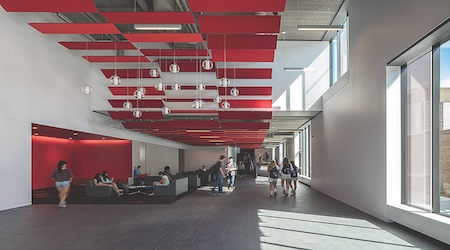 Ceilings Are Crucial Elements In The Design and Acoustics of Commercial Spaces