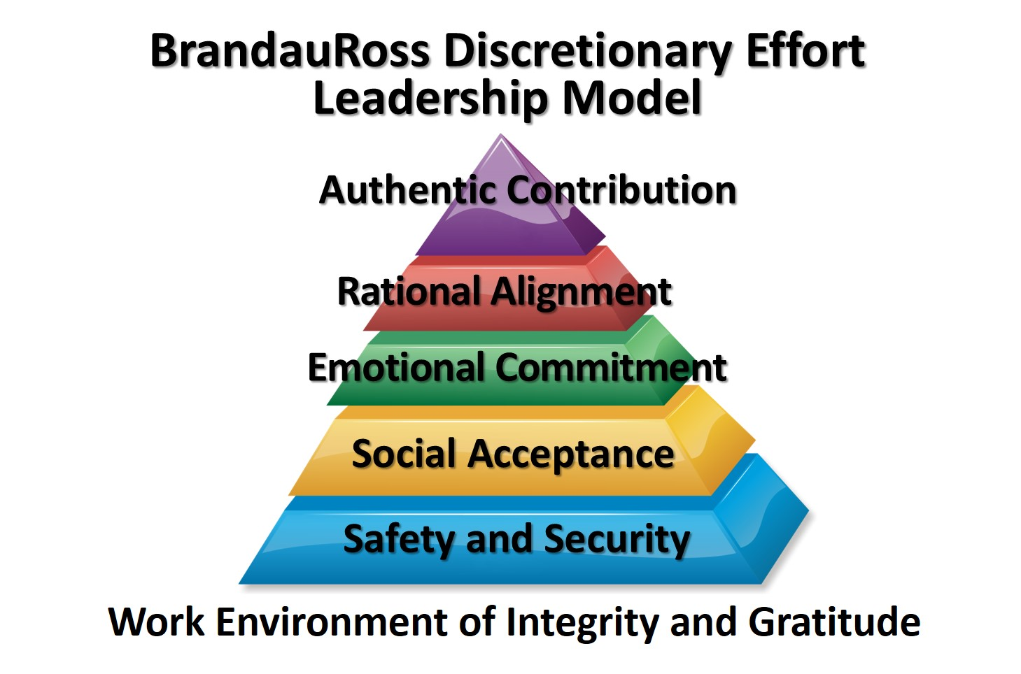 BrandauRoss Discretionary Effort Leadership Model