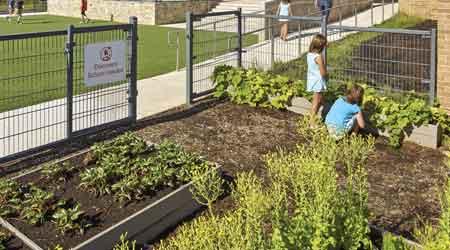 Discovery Elementary garden