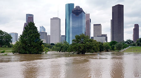 The consequences of the spill Buffalo Bayou River. Flooded park in downtown Houston