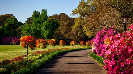 landscapes for environmental benefits