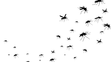 Flying mosquitoes black silhouette