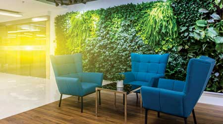 green wall in open office