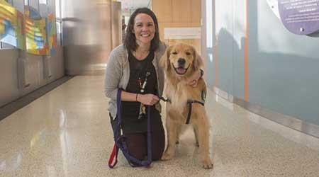 facility dog therapy dog