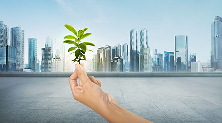 Green plant in human hand on modern city background