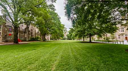 Duke University greenspace