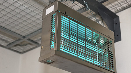 Ultraviolet lamps used to sterilize air in food processing plants.